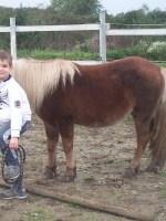 equitazione educativa codroipo 06 150x200 Equitazione Educativa in fattoria a Codroipo