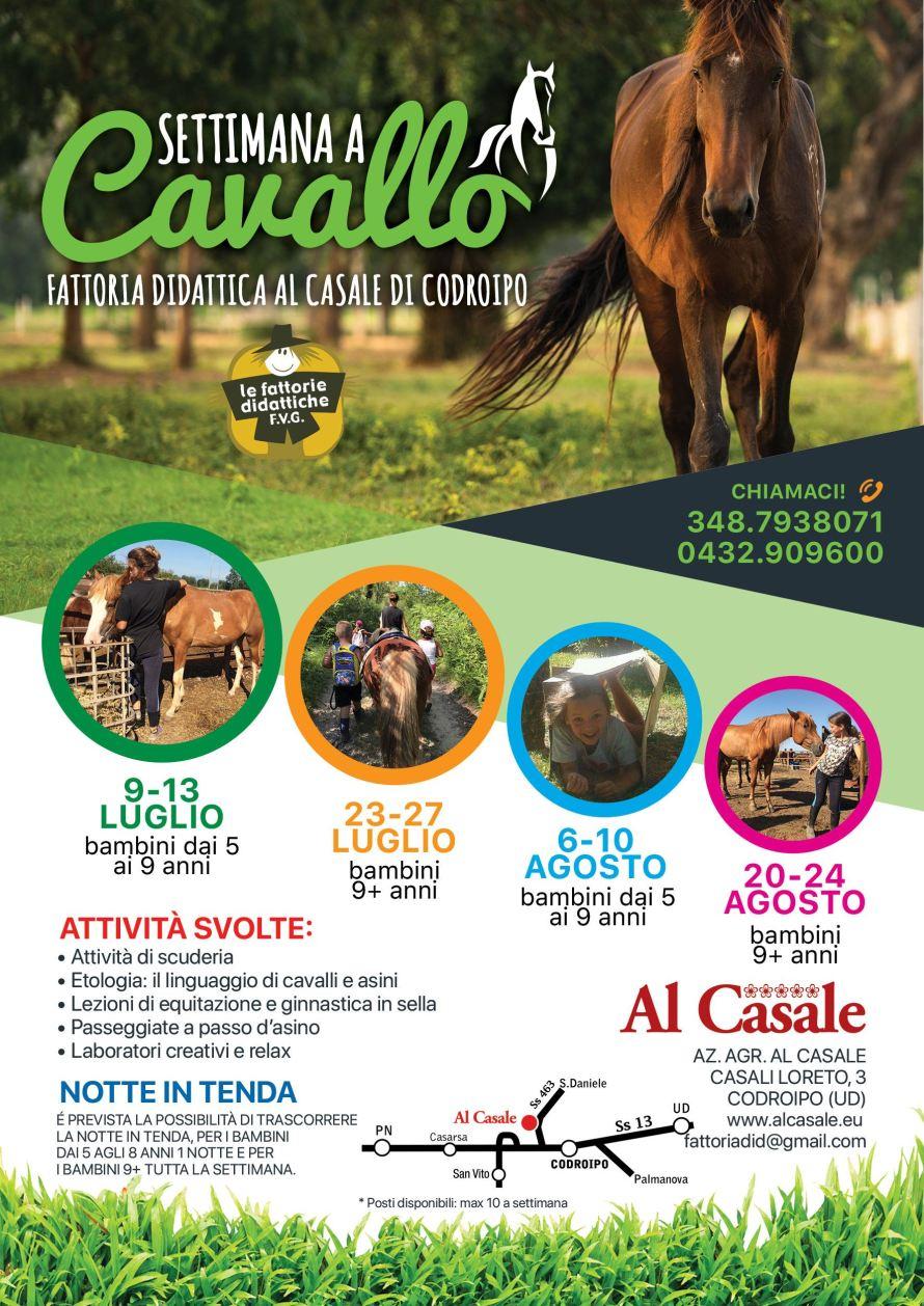 Settimana a cavallo 2018 890x1258 Settimana a cavallo alla Fattoria Didattica Al Casale di Codroipo