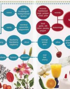 Chart of marijuana aromas source big book buds also terpenes and their effects alchimia blog rh alchimiaweb