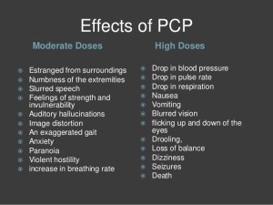 Effects of PCP