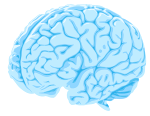 Traumatic Brain Injury Recovery