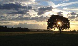 Sunrise image