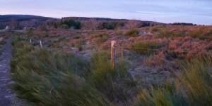 Lever de soleil sur le plateau de la Verrerie