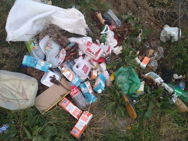 Descarte de lixo em terrenos baldios; o que fazer para cobrir essa agressão ao meio ambiente?