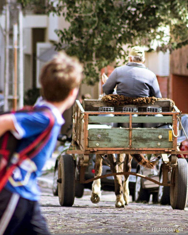 Carroceiros deverão passar por curso de capacitação para melhorar o trânsito