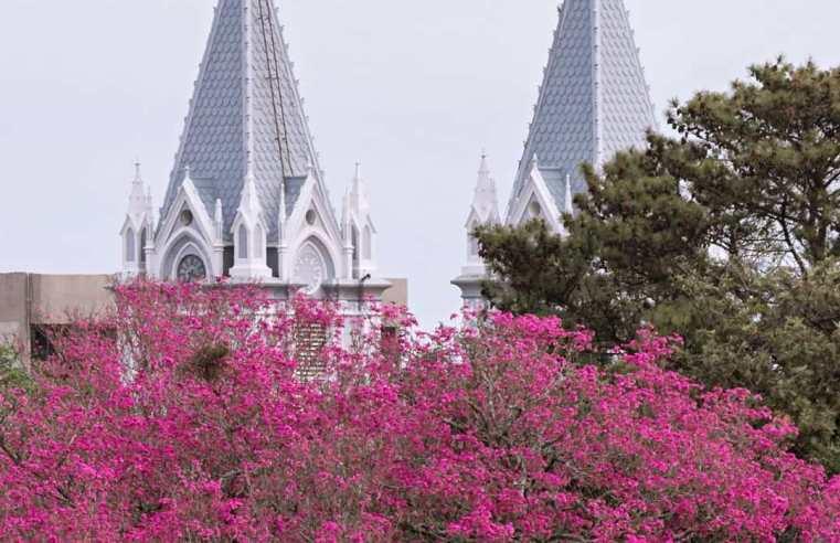 Primavera começa nesta terça-feira e temperatura vai a 33º C, sexta em Alegrete