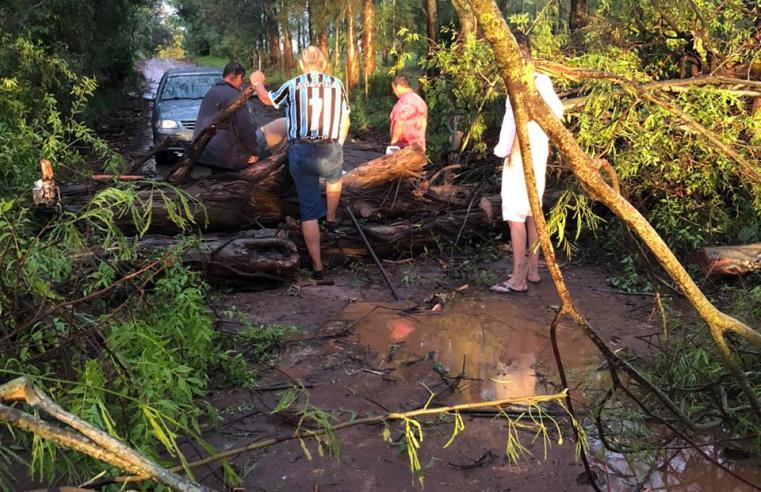 Temporal provoca alagamentos, derruba postes de energia e árvores em Alegrete; veja os vídeos