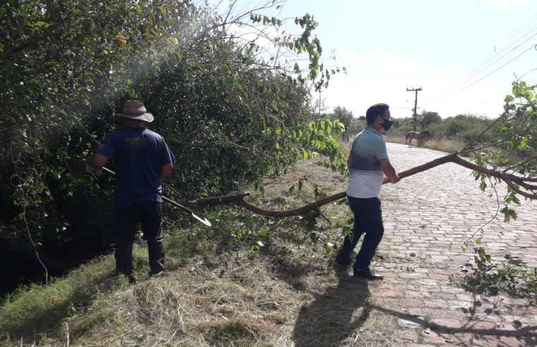 Escoteiros e associação do bairro Medianeira fazem mutirão comunitário