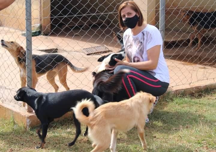 Amor Vira Lata, do gabinete da vereadora Dileusa Alves, estimula adoção de cães do canil