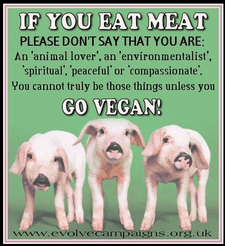 vegan means love for life and yourself, with action, not words
