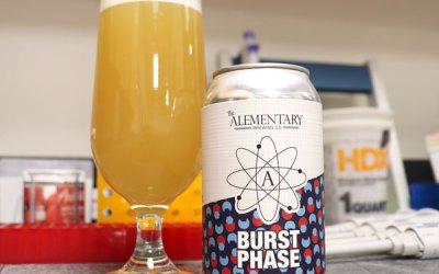 Enzyme Kinetics and the Art of Brewing