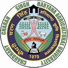 CCU HAU Haryana
