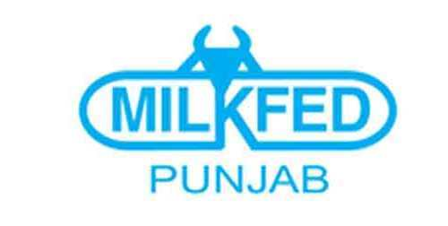 VERKA Punjab Declared The Result For Post of Junior Executive (PLM)