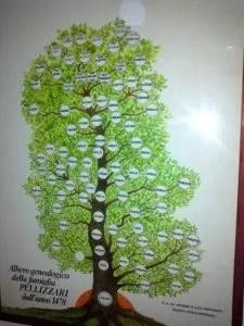 L'albero genealogico dei Pellizzari
