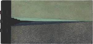 Pierre Lecuire – Pasargade – Vera Pargava Dorso in cuoio con cuciture su doppi lacci, piatti in galuchat levigato grigio e verde, box nero e legno colorato verde e nero