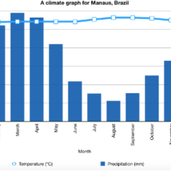 Amazon Rainforest Layers Diagram Duck Skeleton Characteristics Of The Tropical Equatorial A Level Climate Graph For Manaus