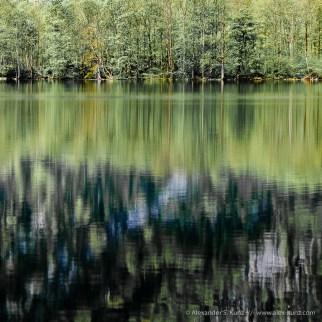 Trees reflecting in the waters of Königsee-Obersee, Nationalpark Berchtesgaden, Bavaria, Germany. May 2010.
