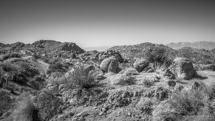 Desert Landscape at Joshua Tree National Park, California.