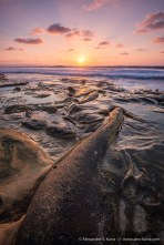 Sunset at the tide pools with their alien-looking concretions, Hospital Point, La Jolla, California. October 2014.