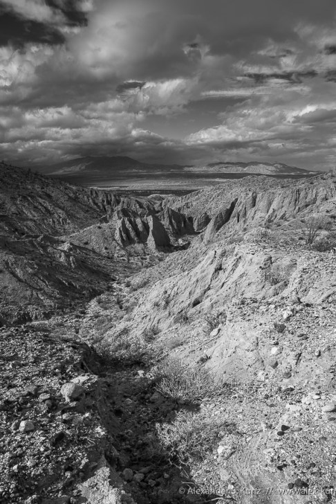 North -- Canyon Sin Nombre, Ocotillo, California, United States