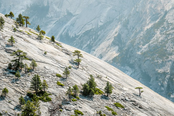 Basket Dome Slope -- North Dome, Yosemite NP, California, United States