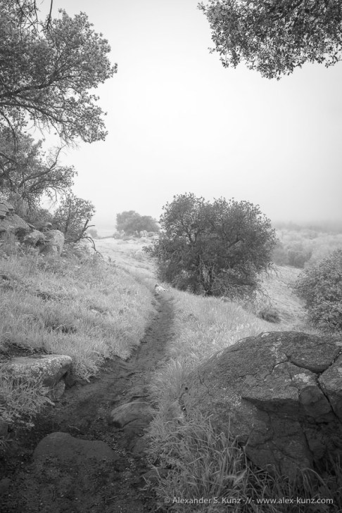 The Trail -- Highland Valley Trail, Rancho Bernardo, California