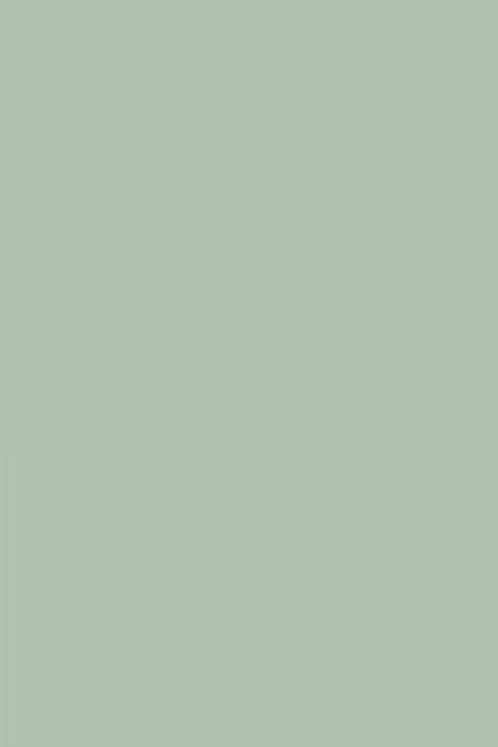 Farrow And Ball Teresas Green No 236 Paint Alexander