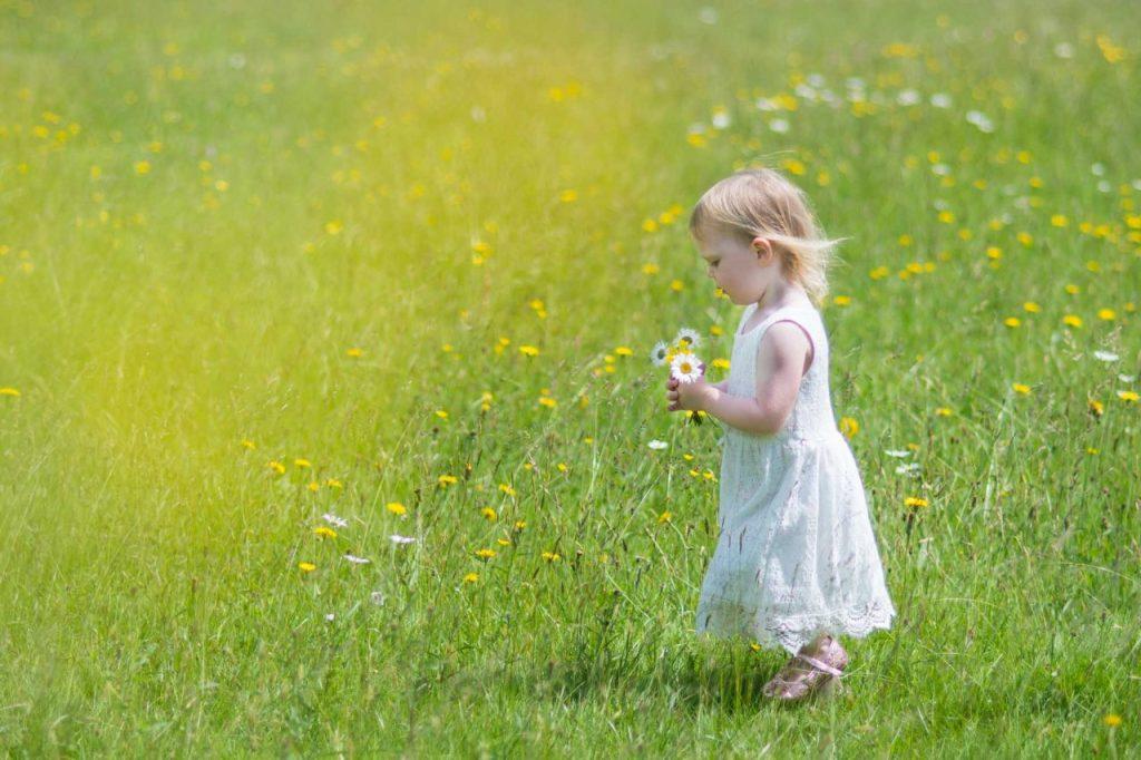 Little girl walking in a wild meadow holding a bunch of wild flowers