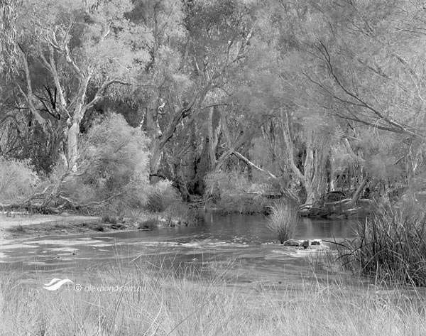 Canning River Bannister Creek Perth