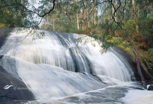Lane Poole Falls Northcliffe Southern Forests Series Postcard