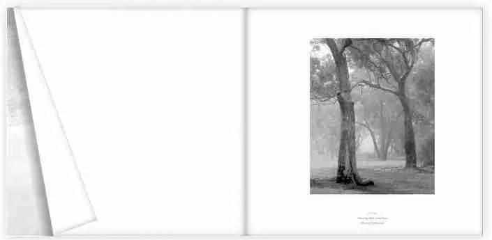 dissociation book