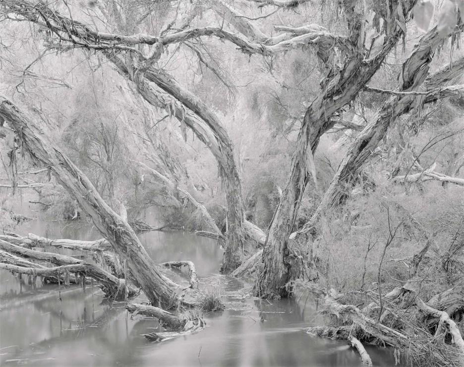 large format film landscape photography
