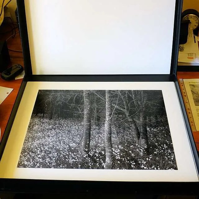 silver gelatin prints clamshell