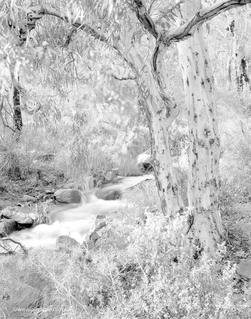 Lesmurdie Brook Falls Perth