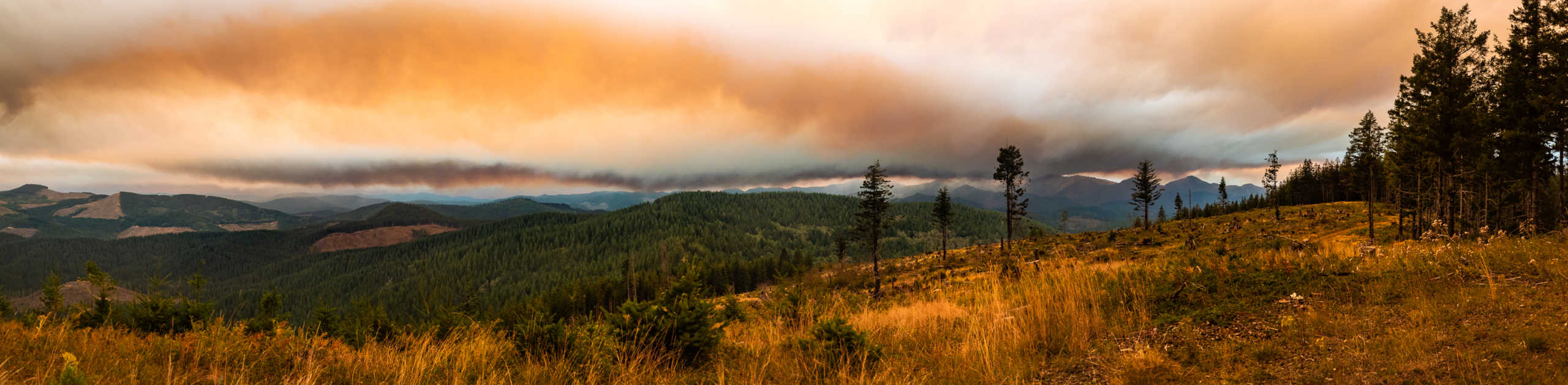 Panoramic View of Tillamook Wilderness During historic Wildfire Season