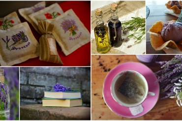 Top 5 Lavender Oil Uses