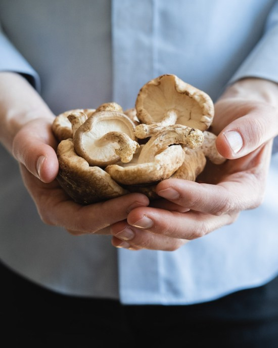 hands holding a bunch of shiitake mushrooms
