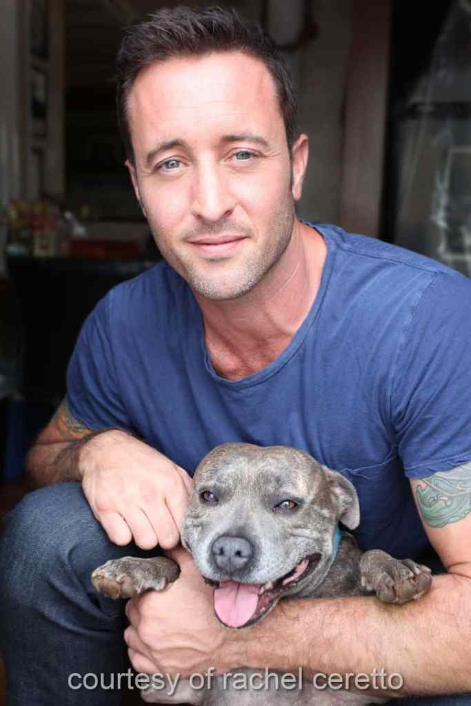 alex o'loughlin and dusty oloughlin
