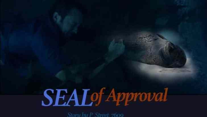 Hawaii Five 0 Fan Fiction -SEAL of Approval-Part 3