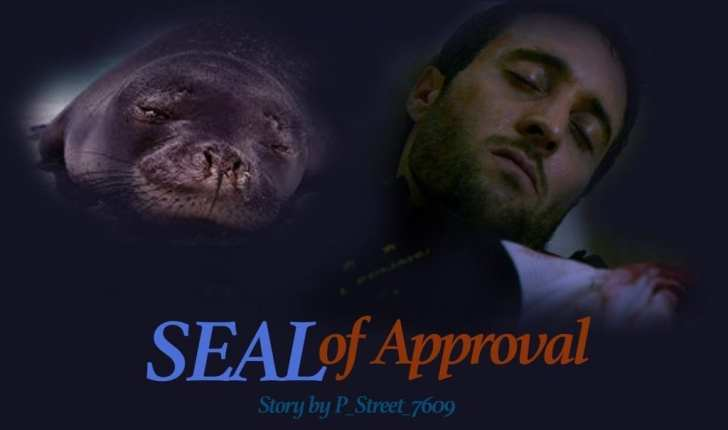 hawaii five 0 seal of approval fan fiction