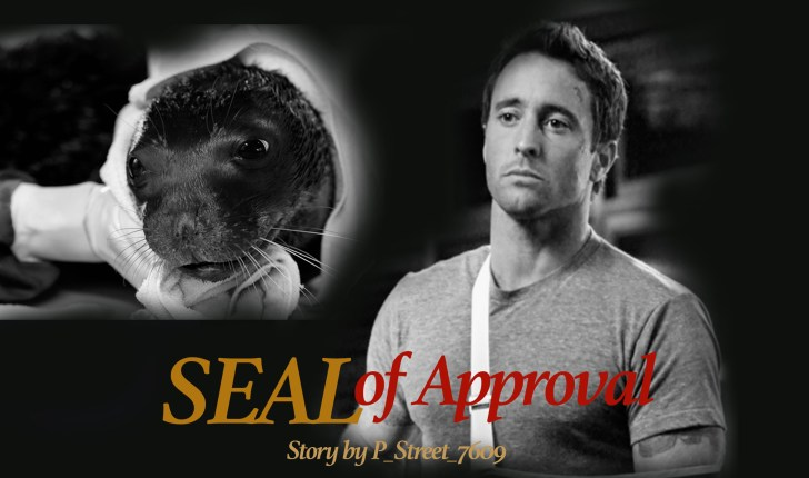 hawaii five 0 seal of approval fan fiction