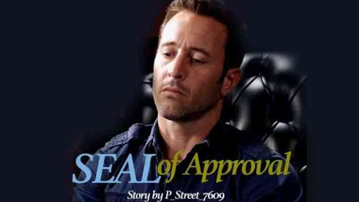 Hawaii Five 0 Fan Fiction -SEAL of Approval-Part 6
