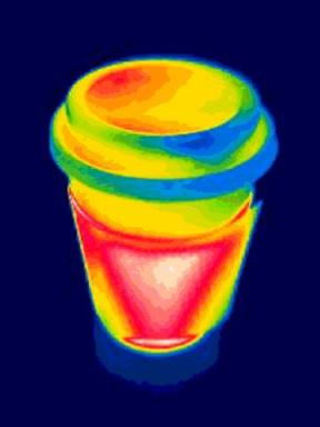 Just having some fun with a thermal imaging camera...