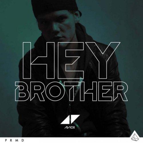 Avicii - Hey Brother