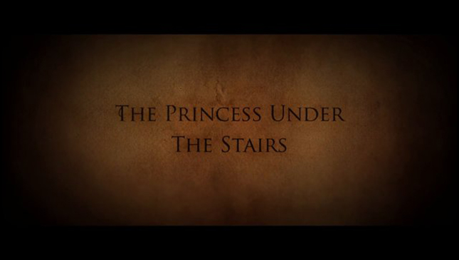 The Princess Under the Stairs