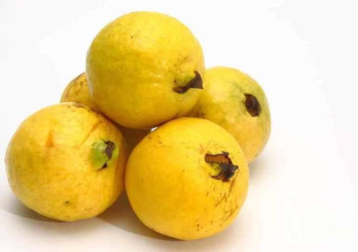 الزيتون والجوافة: الشعر الحر وقصيدة النثر