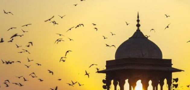 المذاهب الإسلامية .. الواقع والطموح