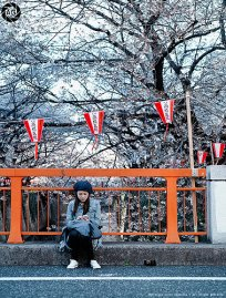 Taking a break from the blossoms: Nakameguro, Tokyo
