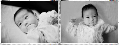 We shoot the photos & make the album