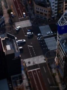 www-AG-tokyo-dinkytown_9335747